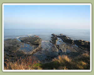 The Coast Near Craster